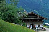 Gasthof Streichen mit Blumenwiese, Ettenhausen, Chiemgauer Alpen, Chiemgau, Bayerische Voralpen, Oberbayern, Bayern, Deutschland