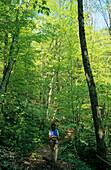 Woman hiking in deciduous forest, Chiemgau Alps, Chiemgau, Bavaria, Germany