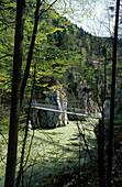 suspension bridge crossing Tiroler Ache, two hikers on bridge, Klobenstein, canyon of Entenlochklamm, Tiroler Ache, Tiroler Achen, Chiemgau range, Tyrol, Austria
