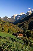 Flowering meadow with alpine hut, Wilder Kaiser range in background, valley Kaisertal, Kaiser mountain range, Tyrol, Austria