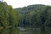 Rowing boat on a lake amidst trees, Eiswoog, Rhineland Palatinate, Germany, Europe
