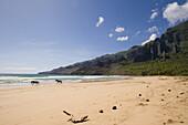 HAA'ATUATUA, lonesome beach with two wild horses in the sunlight, Nuku Hiva, Marquesas, Polynesia, Oceania