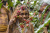 Girl working on coffee plantation, Langila, Highlands, Papua New Guinea, Oceania