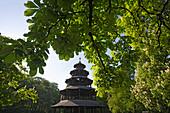 Chinesischer Turm, an original chinese pagoda amidst big chestnut trees at the English Garden, Munich, Bavaria, Germany