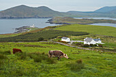 outdoor photo, lighthouse of  Valentia Island,  County Kerry, Ireland, Europe