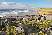 outdoor photo, The Burren, Coast of Fanore,  County Clare, Ireland, Europe