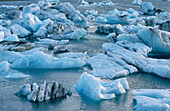 Icebergs from glaciers. Iceland
