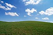 Außen, Farbe, Geräuschlosigkeit, Gras, Himmel, Horizont, Horizontal, Horizonte, Land, Landschaft, Landschaften, Natur, Niemand, Oberfläche, Oberflächen, Positiv, Positive Gefühle, Positives Gefühl, Rasen, Reinheit, Ruhe, Ruhig, Still, Stille, Stimmung, T
