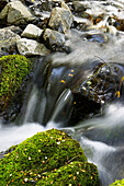 Stream flow between mossy boulders, blurred water. Arthur s Pass National Park, New Zealand