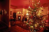 Celebrate, Celebrating, Celebration, Celebrations, Christmas, Christmas ornaments, Christmas tree, Christmas trees, Color, Colour, Concept, Concepts, Decorated, Decoration, Decorations, Holiday, Holidays, Home, Horizontal, Illuminated, Illumination, Indo