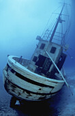Vertical image of a stern perspective of the newly sunk Dutch fishing boat Our Confidence - now resting in 55 feet and just off the sloping shore of Harbour Village Beach Club - Bonaire, Netherlands Antilles (Caribbean)