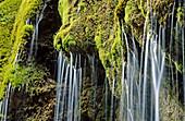 Waterfall. Ammer near Saulgrub. Upper Bavaria. Germany.