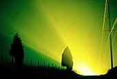 Aussen, Darüber hinaus, Draussen, Energie, Erleuchtet, Erleuchtung, Farbe, Gelb, Gott, Grün, Horizont, Horizontal, Horizonte, Kraft, Land, Landschaft, Landschaften, Monochrom, Monochromatisch, Natur, seltsam, Sonne, Sonnenaufgang, Sonnenaufgänge, Sonnenl