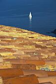 Cap de Creus Natural Park. Rough Coast. Alt Empordà Region. Girona Province. Catalonia. Spain