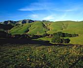 Santa Lucia mountain range with late afternoon light in January. San Luis Obispo county. California. USA