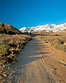 The Buttermilk Road in Inyo National Forest. Sierra Nevada Mountain Range. California. USA