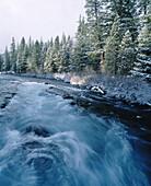 Wizard Falls in Metolius River. Deschutes National Forest. Jefferson County. Oregon. USA