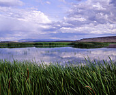 Buena Vista ponds. Malheur National Wildlife Refuge. Harney County. Eastern Oregon. USA