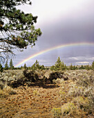 Rainbow over old Wagon road in the high desert of central Oregon. USA