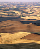 Sunlight and shadows on harvested wheat fields from Steptoe Butte, Palouse region. Whitman County, Eastern Washington. USA
