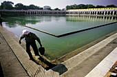 Sikh Temple, pool where the faithful perform their ablutions. Delhi. India
