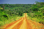 Country road. Misiones province. Argentina