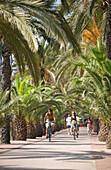 Fahrradfahren am Moll Mestral, Port Olympico, Barcelona, Katalonien, Spanien