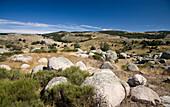 natural undulating landscape in Cevennes Nationalpark, France