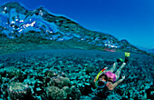Snorkeling over Coral Reef, Maldives, Indian Ocean, Felidu Atoll