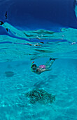 Snorkeling in Lagoon, Maldives, Indian Ocean, North-Male Atoll