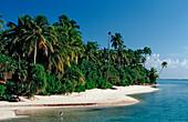 Palmy Beach on Maledivian Island, Maldives, Indian Ocean, Medhufushi, Meemu Atoll