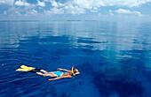 Snorkeling in glassy Ocean, Maldives, Indian Ocean, Ari Atoll
