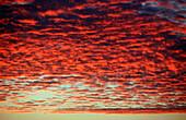 Sky at Sunset, Maldives, Indian Ocean, Meemu Atoll