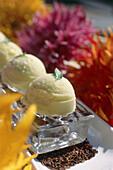 Sorbet dessert in Restaurant Klee Brasserie, Manhattan, New York, USA, America