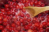 Cranberries cooking in pot