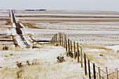 Fenceline and road near Red Rock Coulee, with fresh snow. Medicine Hat, Alberta, Canada