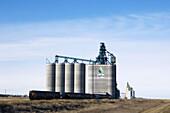 High throughput grain elevator. Alberta, Canada