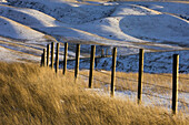 Fenceline overlooking Oldman River Valley with fresh snow. Picture Butte, Alberta, Canada