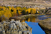 Sandstone hoodoos with fall cottonwoods in Milk River Valley. Writing On Stone Provincial Park. Alberta
