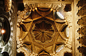 Vault in the Great Mosque of Cordoba. Andalusia. Spain