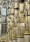 Church of St. Jan. Den Bosch, Netherlands