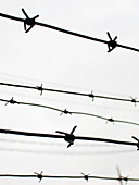 B&W, Barbed wire, Black-and-White, Close up, Close-up, Closeup, Concept, Concepts, Danger, Detail, Details, Difficult, Difficulty, Fence, Fences, Hazard, Monochromatic, Monochrome, Security, Slave, Slavery, Slaves, Symbolic, Vertical, Wire, K65-221202, a