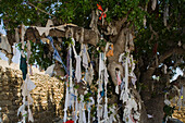 Tree of desires at Agia Solomoni, cave church carved out of limestone rock which was originally used as a catacomb, Paphos, South Cyprus, Cyprus