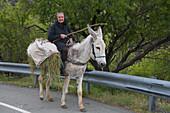 Older woman riding a donkey, near Fikardou, Pitsilia region, Troodos mountains, South Cyprus, Cyprus