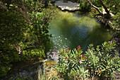 Adonis Baths, near Coral Bay, Paphos, South Cyprus, Cyprus