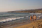 Three young women walking along the beach, Lara beach, Akamas nature parc, South Cyprus, Cyprus
