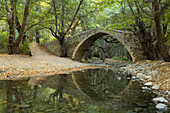 Stone bridge over a river in Diarizos Valley, near Pafos, Cyprus