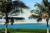 Garden of Al Hamra Hotel, Ras Al Khaimah, RAK, United Arab Emirates, UAE