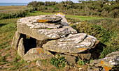 Megalithic monuments prove human presence during the Neolithic era (5300-3000 BC). Île d Yeu. Vendée department. France.