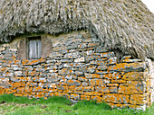 Teito (typical dwelling) in the braña of Mortera de Saliencia, Somiedo Natural Park. Asturias. Spain